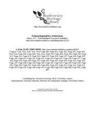 Palaeontographica Americana (Pedro V. 1953).pdf