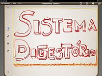 Anatomia e Fisiologia Humana   Sistema Digestório   Noções Básicas.mp4