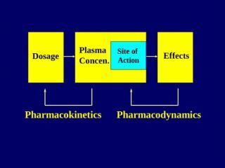 pharmacokinetics-new2.ppt