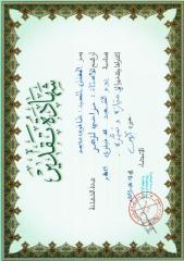 Diplome_Dhafri.pdf