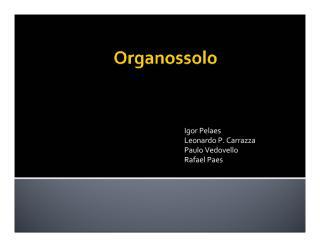 Organossolo.pdf
