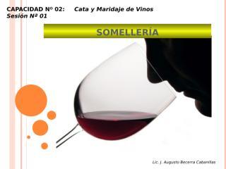 Vino - Clase 5 - Cata.pptx