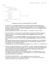 Anatomía y fisiología PARTE DE CUARTA CLASE - copia.pdf